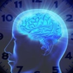 Perdemos el 80% del nuevo conocimiento transcurridas 24 horas